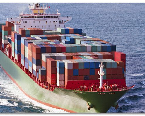 sea freight online checking